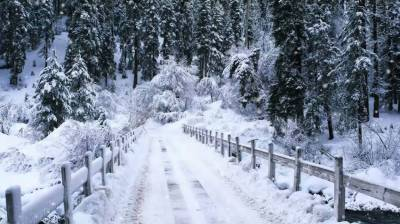 New spell of snowfall continuing in hilly areas