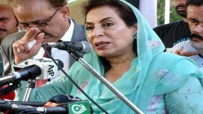 Govt takes steps for enhancing export: Fehmida