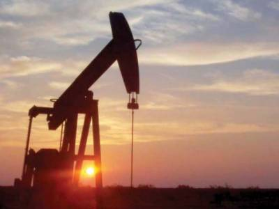 13 New oil and gas wells discoveries made in Pakistan