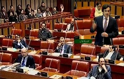 Development of Balochistan main pillar of government's strategy: Senate informed