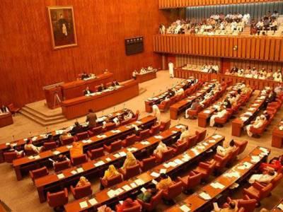 Govt believes in rule of law, Senate informed