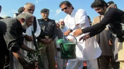 PM to launch 10 bln Tree Plantation Drive in Nankana today