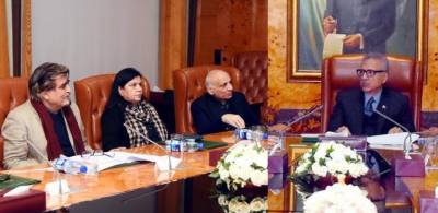 President for promoting Pakistan's art, culture to build soft image