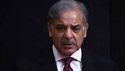 Shahbaz Sharif denotified from three key appointments