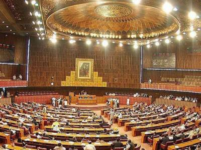 Fazl-ur-Rehman's son elected NA body on religious affairs chairman