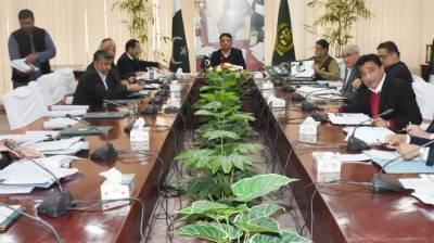 Petroleum Division directed to expedite work on regulatory framework