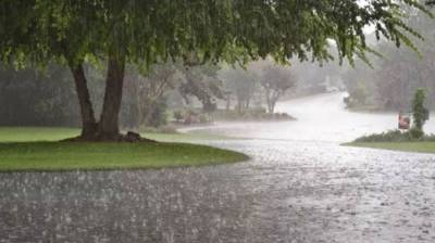 Widespread rain thunderstorm with gusty winds, snowfall expected