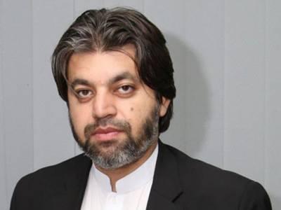 Govt to file petition against Shehbaz Sharif's bail: Ali