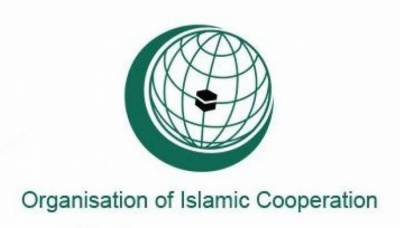 OIC gives a strong response over the IAF LoC violation against Pakistan