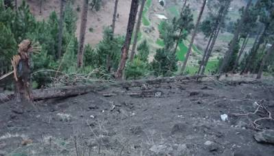 Residents of Balakot expose Indian claims of surgical strike