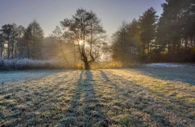 Met Office predicts cold and dry weather