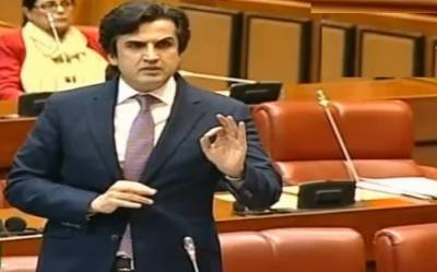 Peace in South Asia to remain elusive till resolution of Kashmir issue, Senate informed