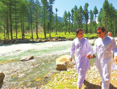 KP government launches unprecedented afforestation plan in the history of Pakistan