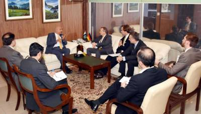 Pakistan welcomes experience, knowledge transfer from int'l partners: Chairman BOI