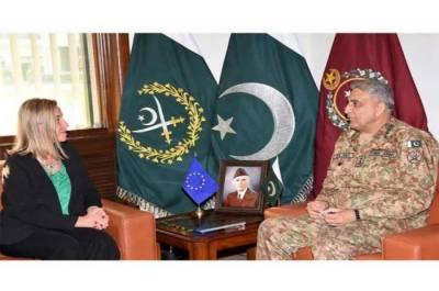 Top EU envoy meets Pakistan Army Chief at GHQ