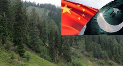 China-Pakistan Forestry Working Group identify priority areas for bilateral cooperation