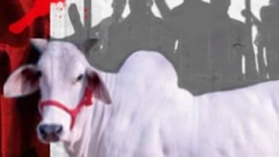 Four Muslims killed, injured in India over just suspicion of cow slaughter
