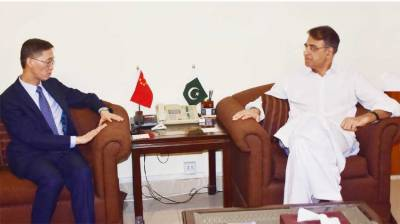 'China committed to timely completion of CPEC projects'