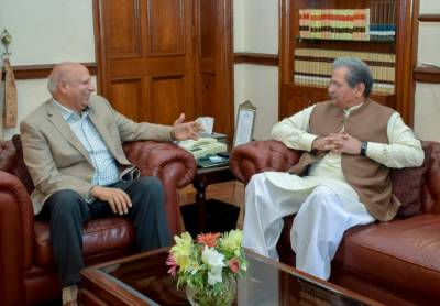 Problems to be resolved through new local government system: Governor Punjab
