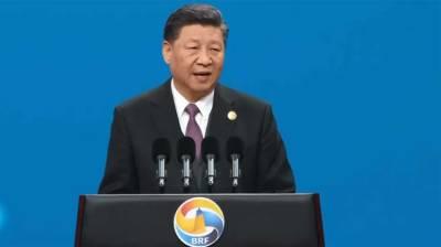 BRI created new platform to boost int'l trade: President Xi