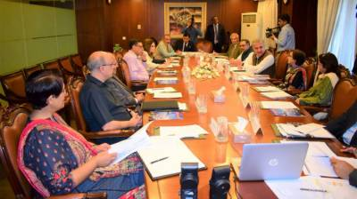 Consultation Council for Foreign Affairs reviews regional security situation