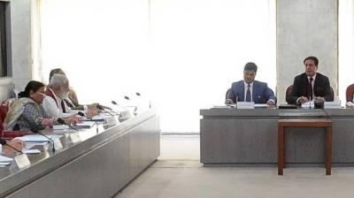 NA body recommends Constitution Amendment Bill 2019