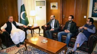 Successful launch of e-visa facility big achievement of PTI Govt: FM