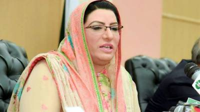 Assets Declaration Scheme to help documentation of economy: Firdous