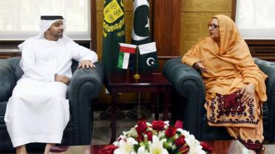 Pakistan UAE discuss collaboration in defence field