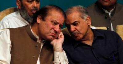 Sharif brothers had offered plea bargain
