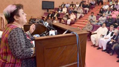 Pakistan to continue support to Palestinians, Kashmiris for right to self-determination: Dr Shireen