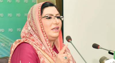 Proposed inquiry commission on loans can summon anybody for questioning: Dr Firdous
