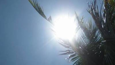 Mainly hot, dry weather expected