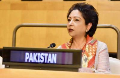 Pakistan calls for UN's Plan of Action to combat Islamophobia