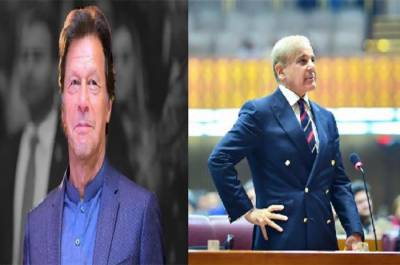 PTI government endorses Shahbaz Sharif's offer