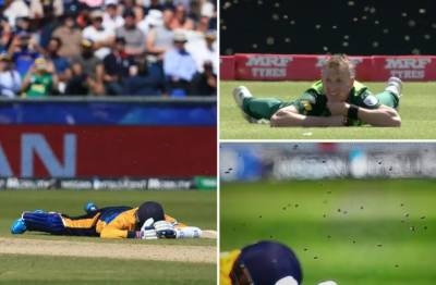 Sri Lanka Vs South Africa world cup match comes under attack, match was stopped