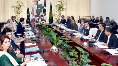 ECNEC approves revision in land acquisition cost of Dasu Hydropower Project