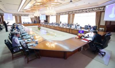 Federal Cabinet decides to constitute committee on Reko Diq verdict