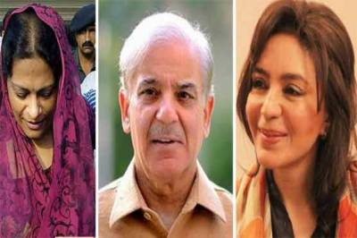 NAB seizes assets and properties of Shahbaz Sharif family members