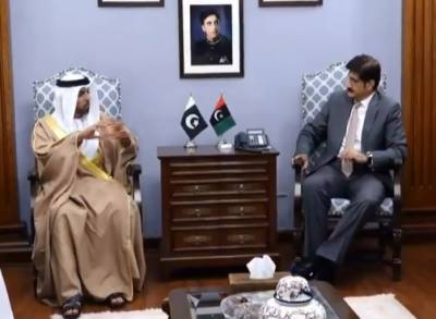 CM Sindh, UAE envoy discuss bilateral ties