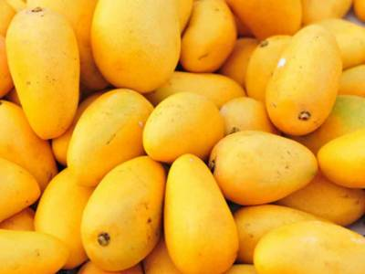 A good news for Pakistani mango exporters from China