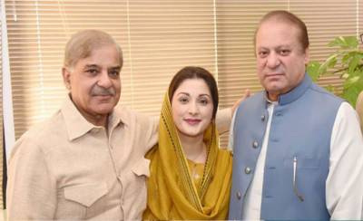 Big trouble for Sharif family in mega money laundering cases