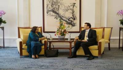 Chinese vice foreign minister welcomes Pakistan's new envoy