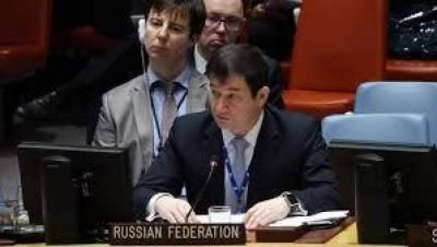 Russian envoy statement on Occupied Kashmir after UNSC meet may irk India