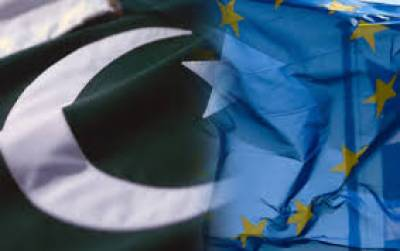 Pakistan seek EU Human Rights Chief support against India over Occupied Kashmir crisis