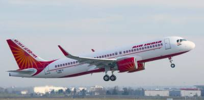 Air India flight comes under Bees attack just before take off