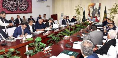 PTI government decides to privatise five key government departments