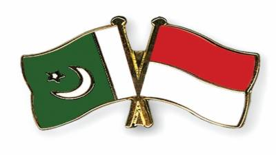Pakistan and Indonesia decide to promote relations in defence sector, Military training