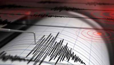 Strong earthquake jolts parts of Pakistan: Media Report