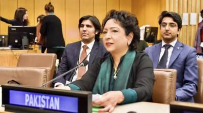 Pakistani Ambassador once again raised Occupied Kashmir lockdown at the United Nations
